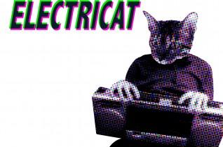 # ElectriCat – Fr