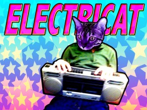 ElectriCat vizu